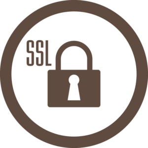 SSL Webseite - Icon