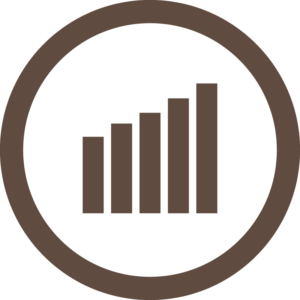 Web Analytics - Icon